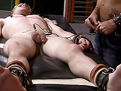 restraints electro nipple play flogging